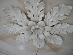 Victorian Plaster Ceiling 18